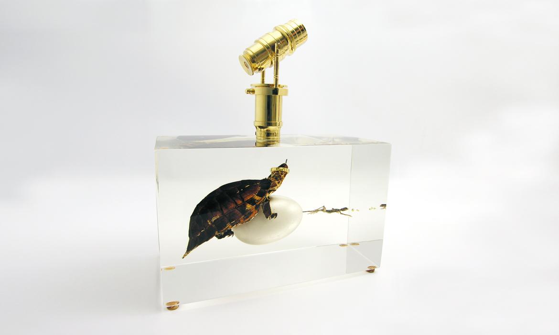 Glassfever
